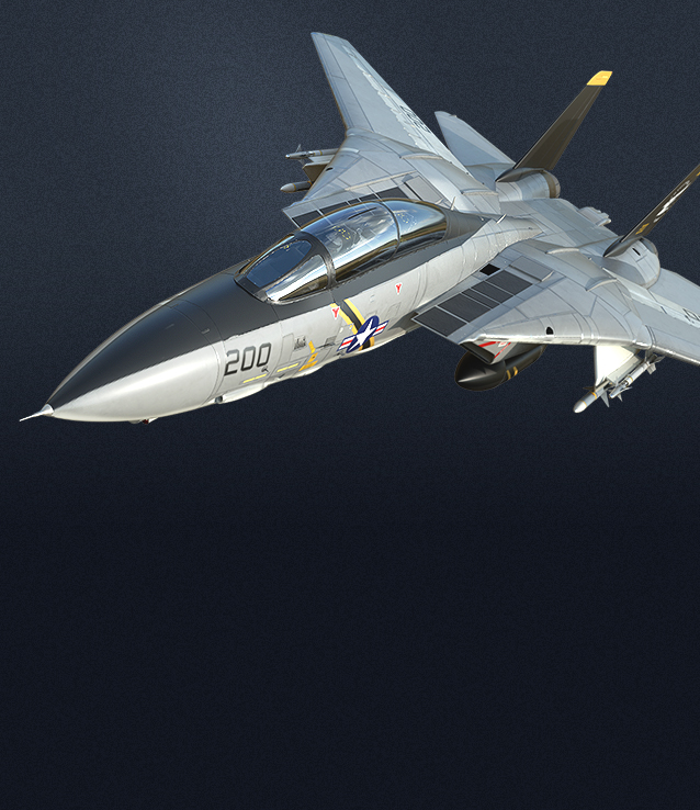 F-14ST picture